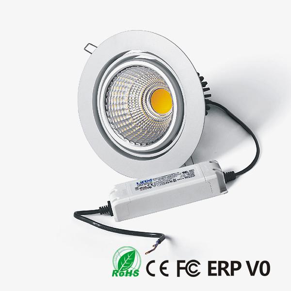 D30170 COB LED Downlight